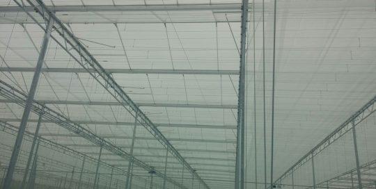 Project-nl Engeland - 02